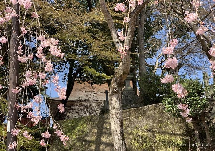 吉野山 蔵王堂
